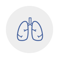 Division of Pulmonology and Allergy icon