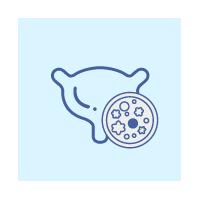 비뇨기계암 아이콘